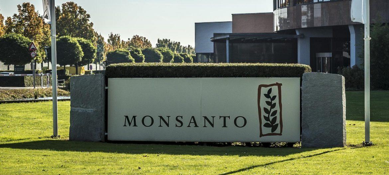 Taubira/Monsanto : une même idéologie à l'origine, des mêmes dégâts en résultat