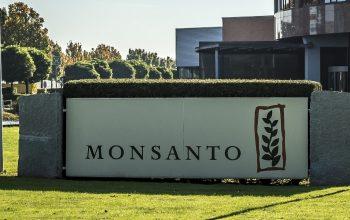 Monsanto - image